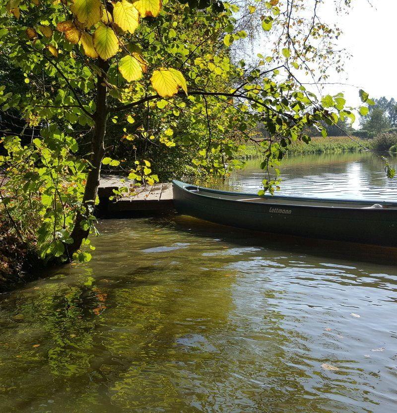 Kanu auf Fluss mit Baum am Ufer